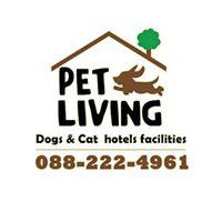 รับฝากสุนัข รับฝากแมว Pet Hotel by Pet Living