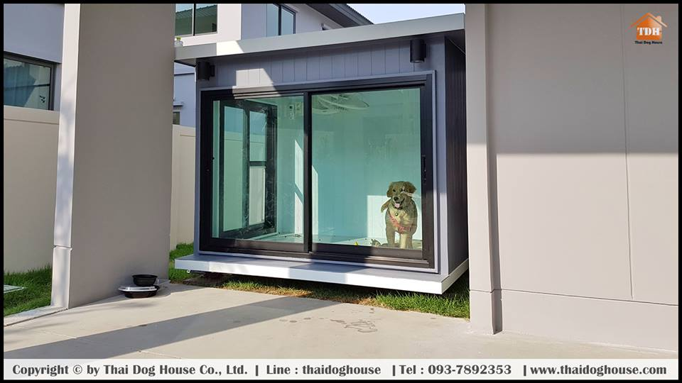 บ้านสุนัขและแมว